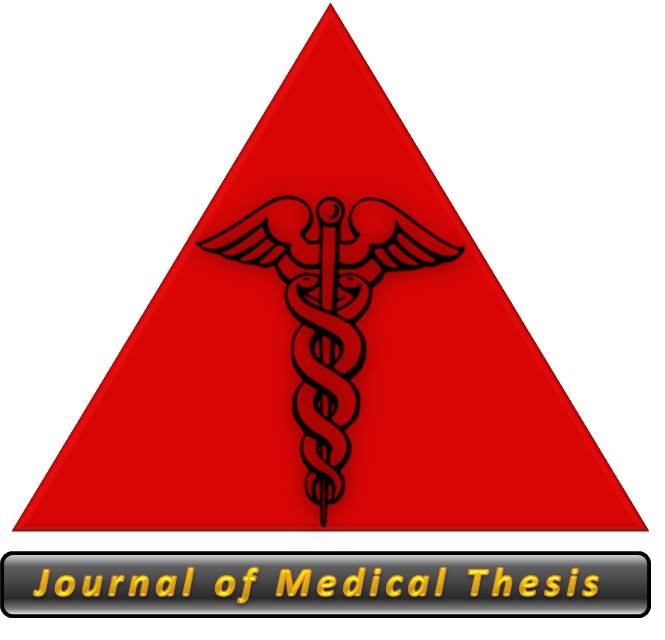 Thesis Eleven Journal Front Cover.jpg